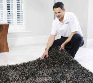 area rug cleaners washington