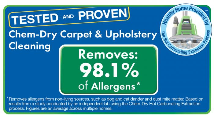 carpet & upholstery cleaning and allergen removal in everett washington seal