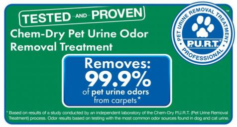 test results for pet urine & odor removal everett washington